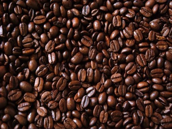 Unwashed robusta green coffee beans Grade 1 screen 16 - Cargoever - Take your cargo everywhere